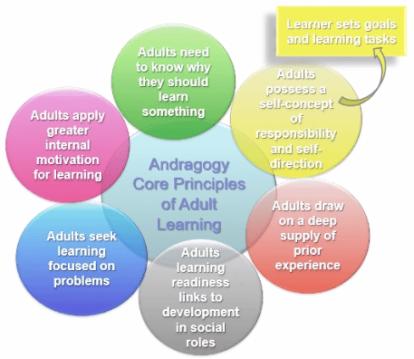 Figure 2 Andragogy Core Principles