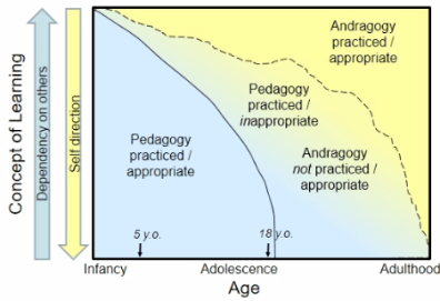 Figure 3 Pedagogy vs. Andragogy with in between