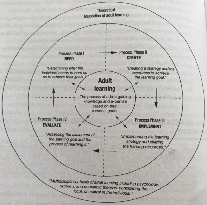 Figure 5 Praxis in adult learning